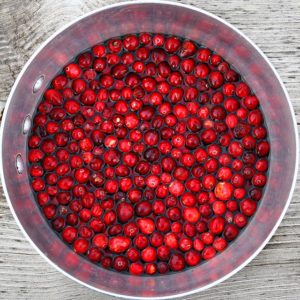 Photo of Cranberries