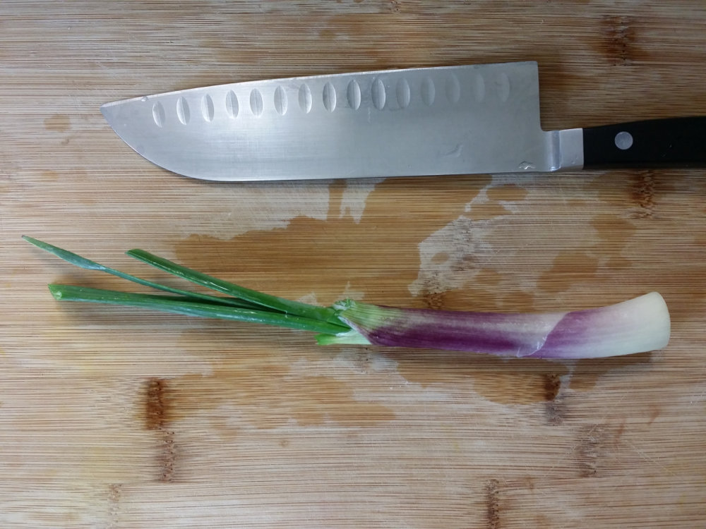 A red spring onion
